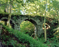 Old bridge at Rocks East Woodland